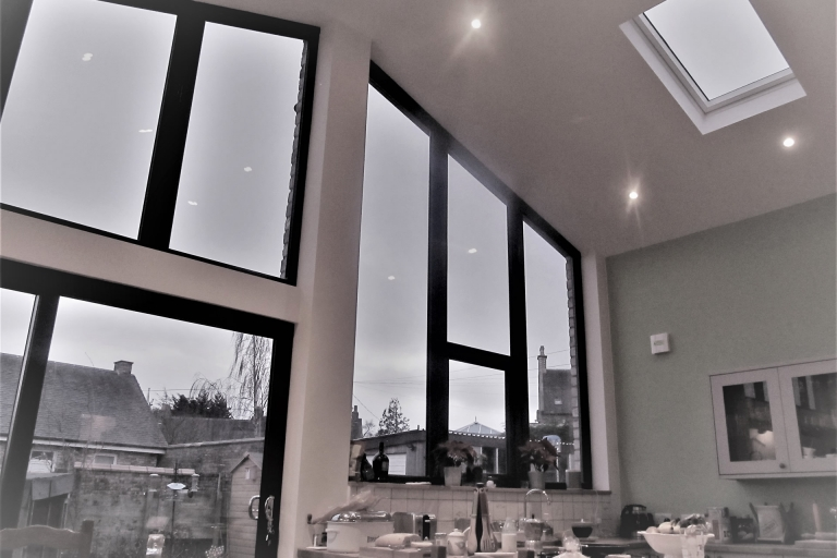 Livingroom and Skylight view